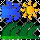 Summer Sunny Nature Icon