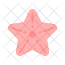 Summer Flat Starfish Icon