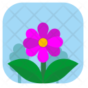 Summer Flower Plant Icon