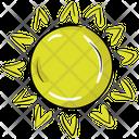 Sun Bright Sun Sunlight Icon