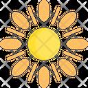 Sun Hot Summer Icon