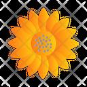 Sun Flower Farming Oil Icon