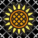 Sun Flower Flower Nature Icon