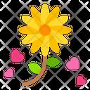 Sun Flower Rose Flower Icon