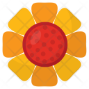 Sunflower Floral Bloom Icon