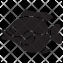 Sunfish Pet Underwater Icon