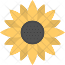 Sunflower Flower Yellow Icon