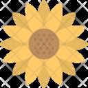 Helianthus Sunflower Crops Icon