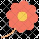 Sunflower Macro Flower Icon