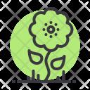 Sunflower Flower Summer Icon