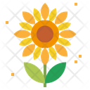 Flower Sunflower Flowers Icon
