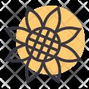 Sunflower Flower Garden Icon