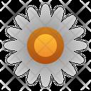 Flower Garden Spring Icon