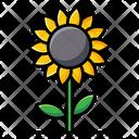 Sunflower Helianthus Flower Icon