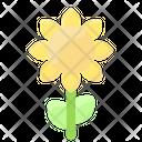Spring Sunflower Blossom Icon