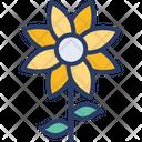 Sunflower Floral Flower Icon