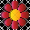 Sunflower Flower Spring Icon