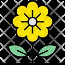 Summer Sunflower Flower Icon