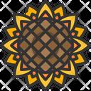 Sunflower Flower Blossom Icon