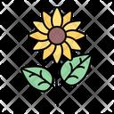 Sunflower Flower Plant Icon