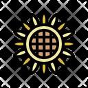 Sunflower Petal Blossom Icon