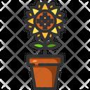 Sunflower Plant Pot Botanic Icon
