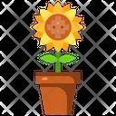 Sunflower Icon