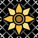 Sunflower Botanical Bloom Icon
