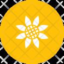 Sunflower Flower Autumn Icon