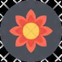 Sunflower Blossom Bloom Icon