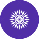 Sunflower Flower Chrysanthemum Icon
