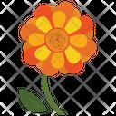 Sunflower Leaf Icon
