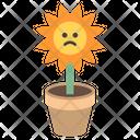 Sunflower Pot Icon