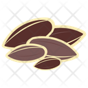 Sunflower Seed Icon