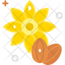 Sunflower Seeds Fruit Healthy Icon