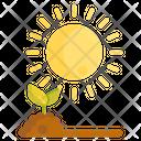 Sunlight Agriculture Garden Icon