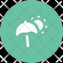Sunshade Parasol Umbrella Icon