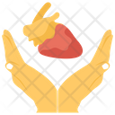 Support Heart Icon