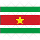 Flag Country Suriname Icon