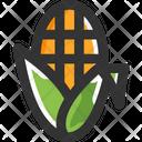 Sweet Corn Icon