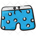 Boxer Knickers Shorts Icon