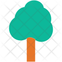 Generic Tree Sycamore Icon