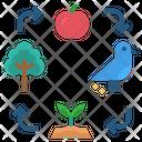 Symbiosis Association Ecology Icon