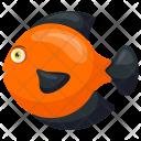 Symphysodon Discus Orange Icon
