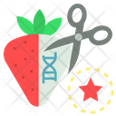 Synthetic Biology Gmo Icon
