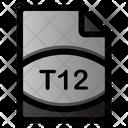T 12 File Icon