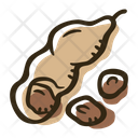 Tamarind Herb Spice Icon