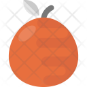 Tangerine Orange Mandarin Icon