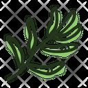 Leaf Tarragon Plant Icon