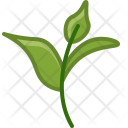 Tea Bio Ecology Icon